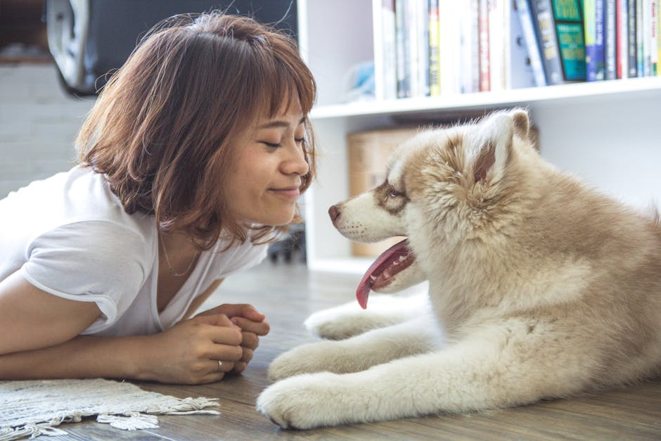 Image result for mental health and pets