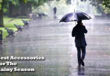 Rainy Season - World Executive Digest