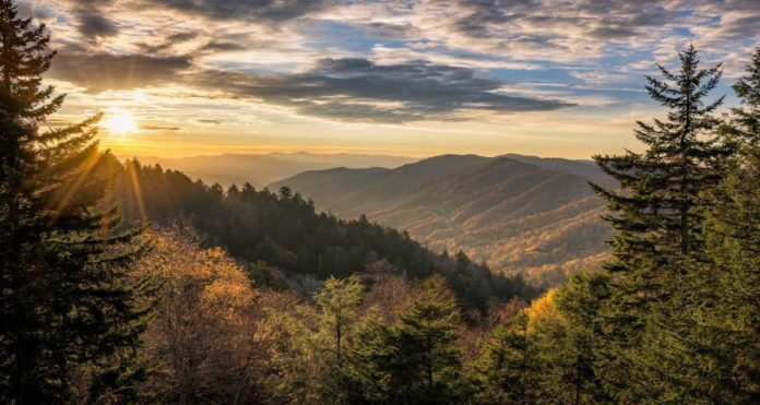 Best Places to Live in Tennessee for Families