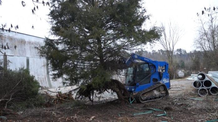 Skid Steer Tree Puller