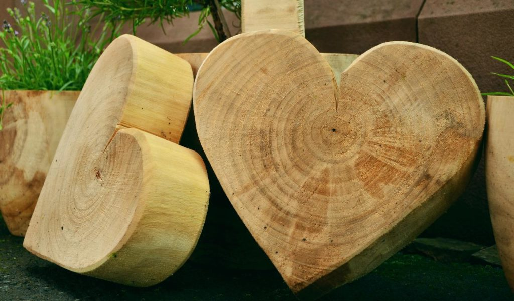 4 Solutions to getting Rid of Excess Wood